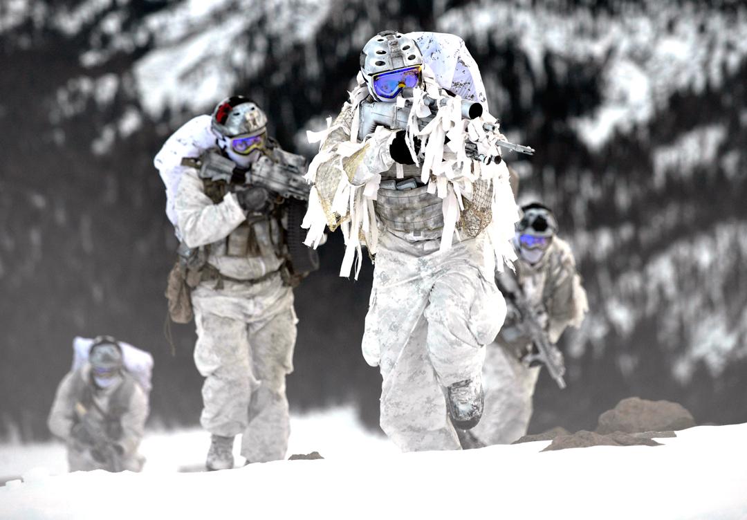 Arctic warfare capabilities