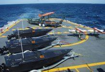 Sea-Hammerhead