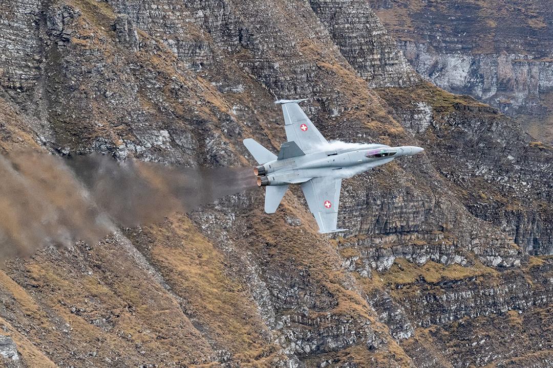 Swiss-Hornet